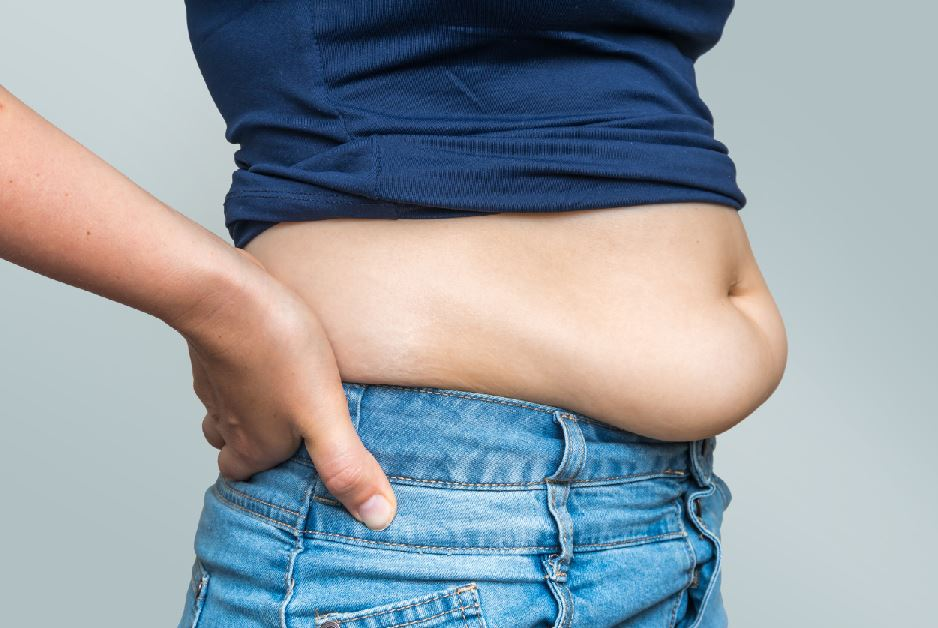 Belly fats connected with higher coronary heart sickness hazard | jarahzadeh