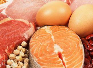 پروتئین و مکمل های آن