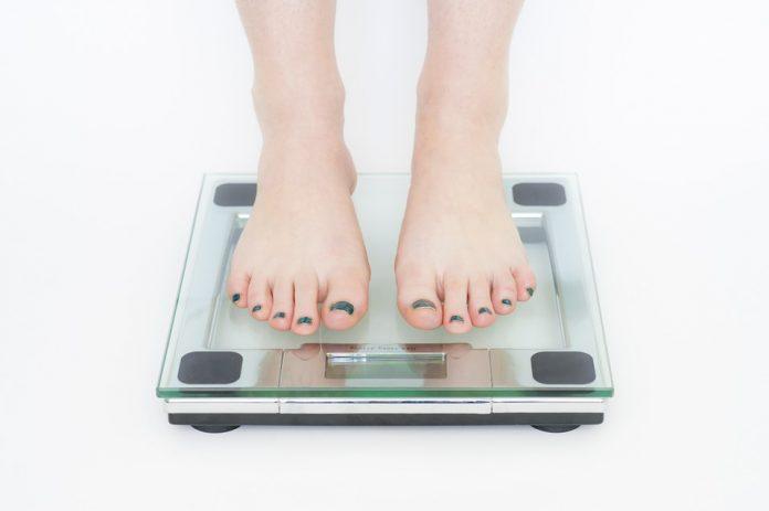 رژیم چاقی
