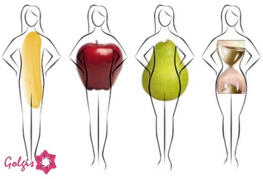 انواع فرم بدنی