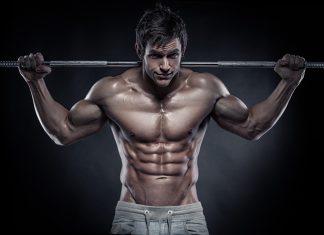 اندام ورزشکاری